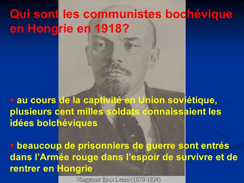 Qui sont les communistes bochévique en Hongrie en 1918.