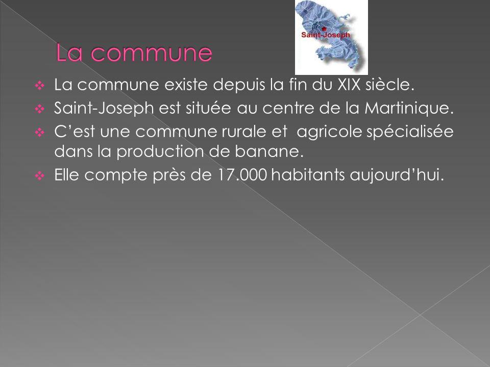  La commune existe depuis la fin du XIX siècle.  Saint-Joseph est située au centre de la Martinique.  C'est une commune rurale et agricole spéciali