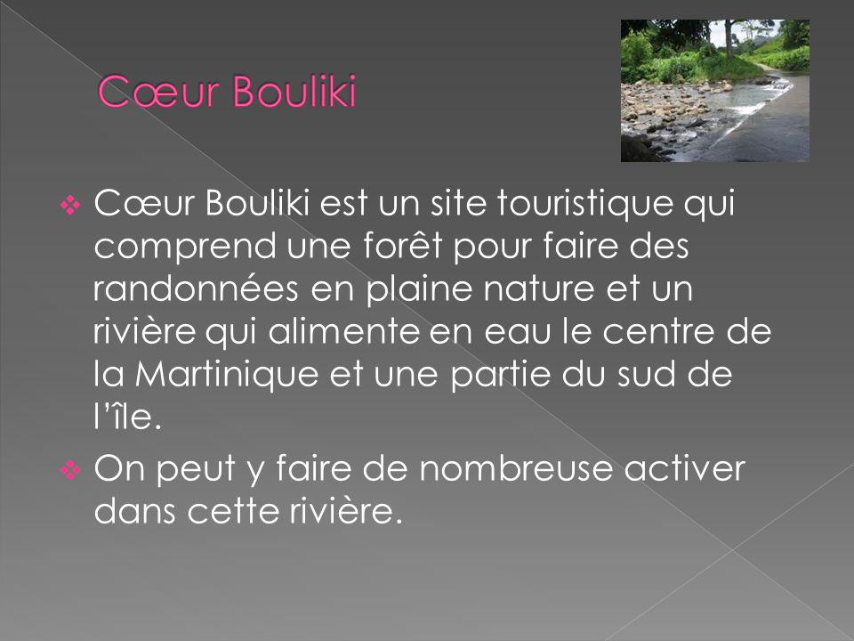  Cœur Bouliki est un site touristique qui comprend une forêt pour faire des randonnées en plaine nature et un rivière qui alimente en eau le centre de la Martinique et une partie du sud de l'île.