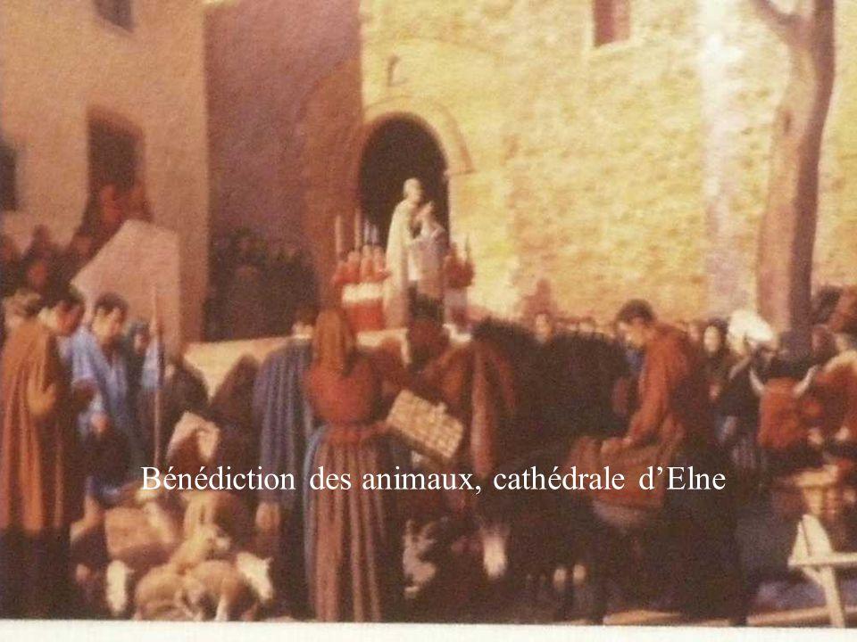 Bénédiction des animaux, cathédrale d'Elne