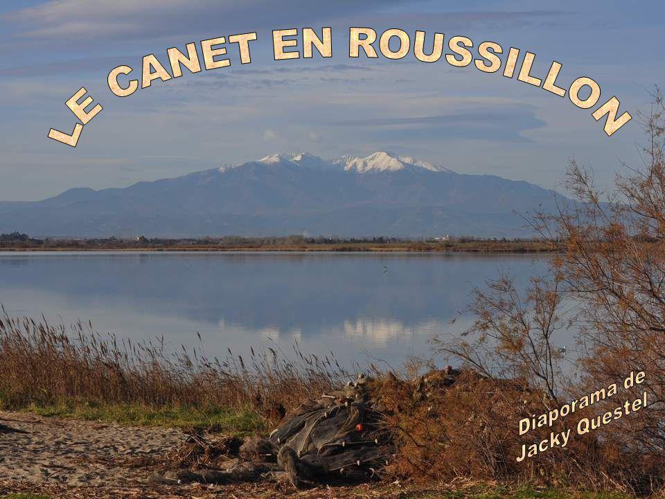 Nous quittons à regret ces lieux idylliques, pour arriver enfin au Canet.