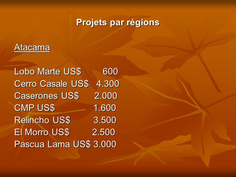 Projets par régions Atacama Lobo Marte US$ 600 Cerro Casale US$ 4.300 Caserones US$ 2.000 CMP US$ 1.600 Relincho US$ 3.500 El Morro US$ 2.500 Pascua L