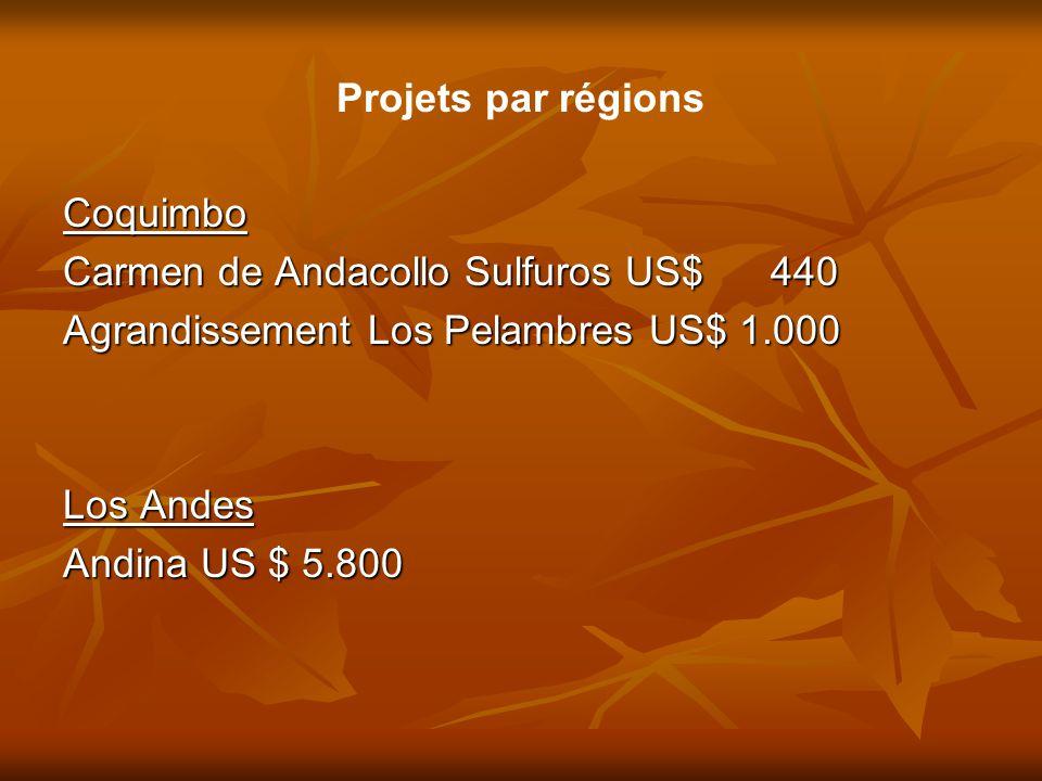 Projets par régions Coquimbo Carmen de Andacollo Sulfuros US$ 440 Agrandissement Los Pelambres US$ 1.000 Los Andes Andina US $ 5.800