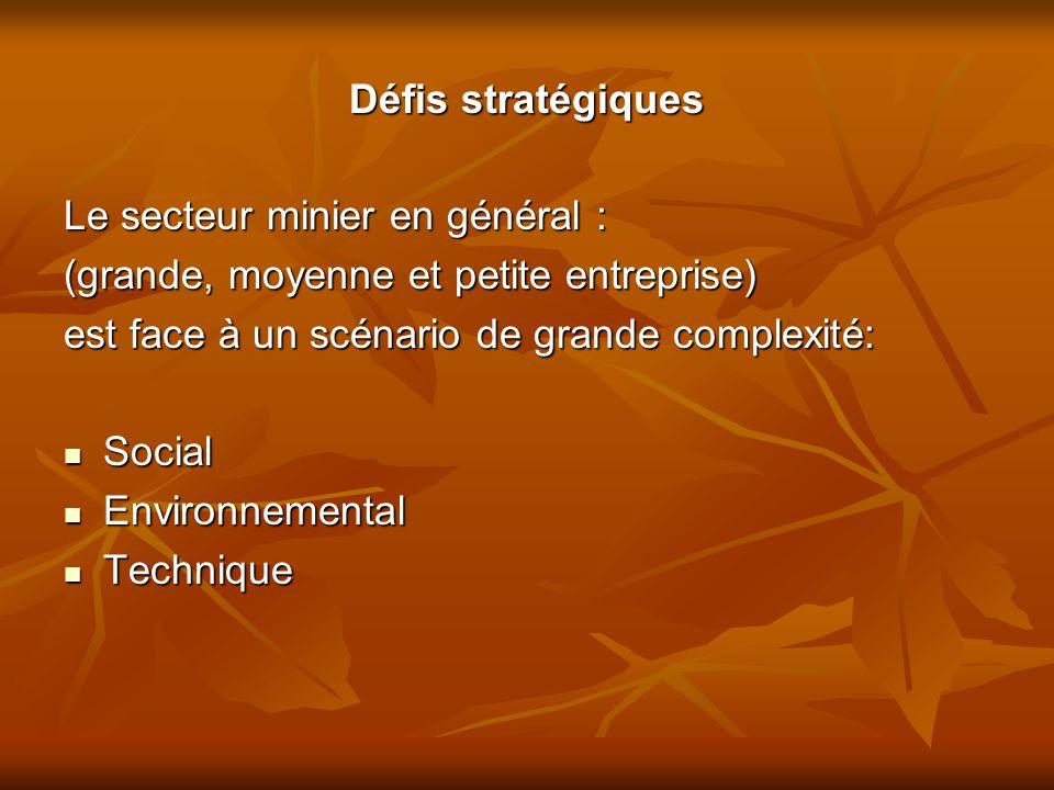 Défis stratégiques Le secteur minier en général : (grande, moyenne et petite entreprise) est face à un scénario de grande complexité: Social Social En