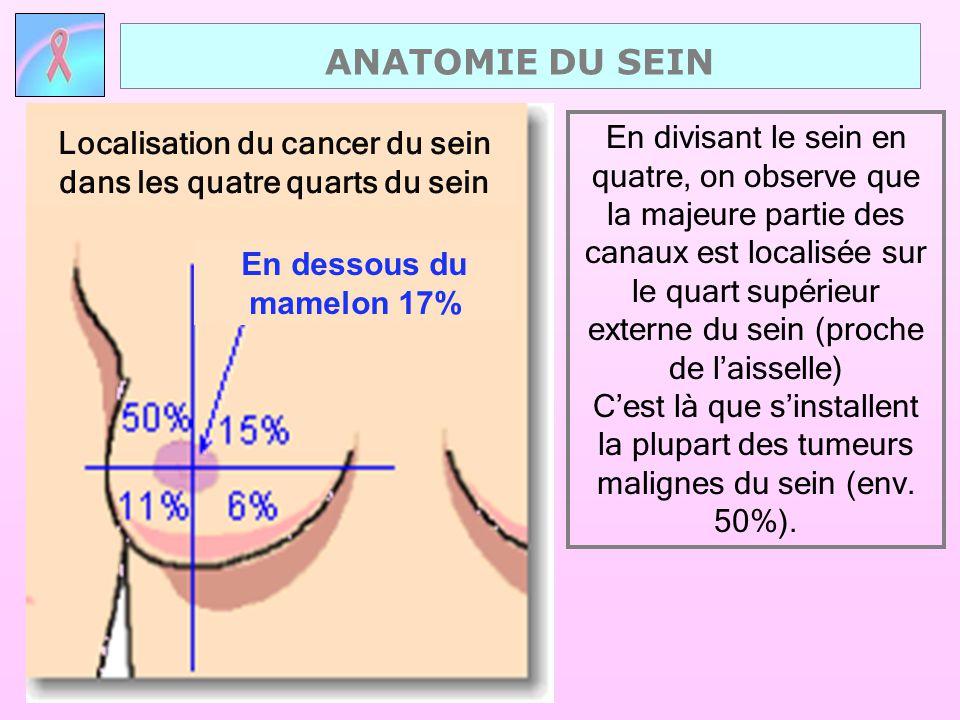 En divisant le sein en quatre, on observe que la majeure partie des canaux est localisée sur le quart supérieur externe du sein (proche de l'aisselle)