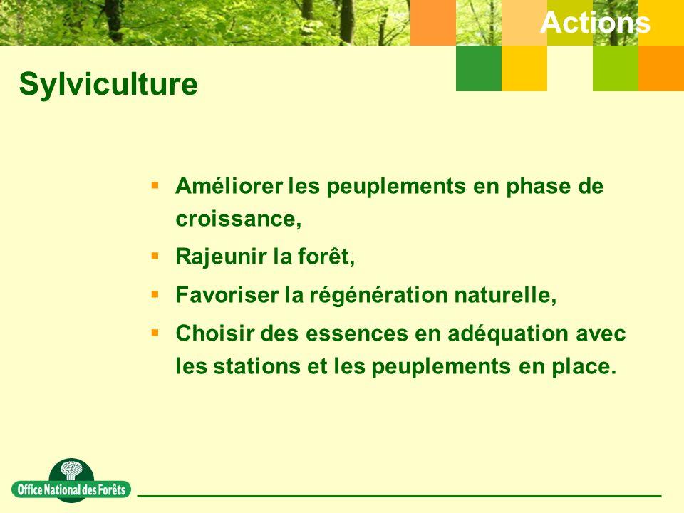 Sylviculture Actions  Améliorer les peuplements en phase de croissance,  Rajeunir la forêt,  Favoriser la régénération naturelle,  Choisir des essences en adéquation avec les stations et les peuplements en place.