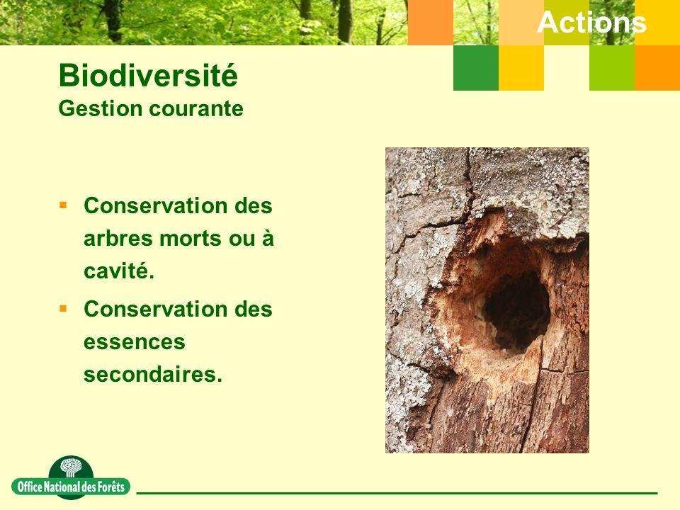 Biodiversité Gestion courante  Conservation des arbres morts ou à cavité.