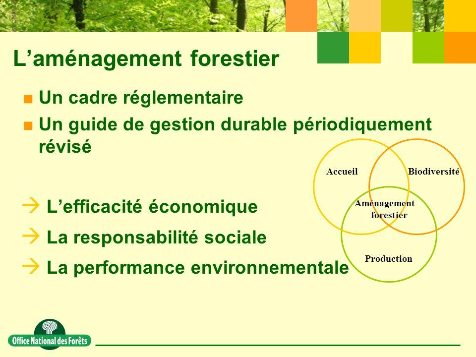 AccueilBiodiversité Production Aménagement forestier L'aménagement forestier  Un cadre réglementaire  Un guide de gestion durable périodiquement révisé  L'efficacité économique  La responsabilité sociale  La performance environnementale
