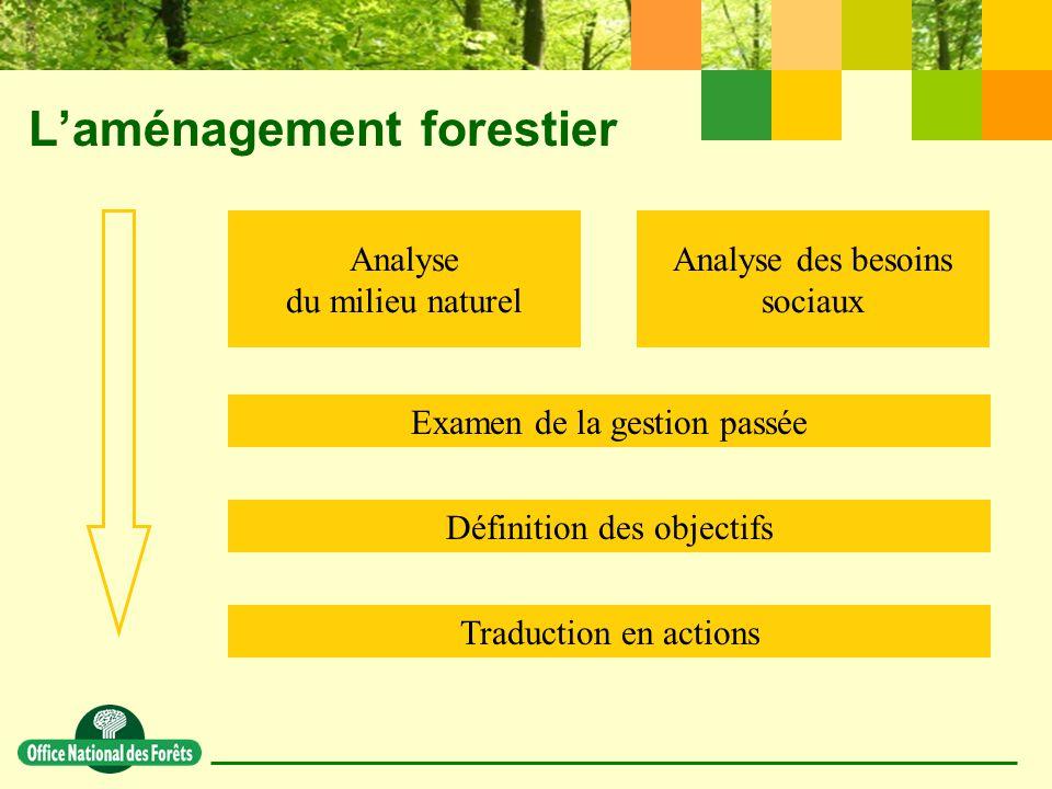 L'aménagement forestier Analyse du milieu naturel Analyse des besoins sociaux Examen de la gestion passée Définition des objectifs Traduction en actions