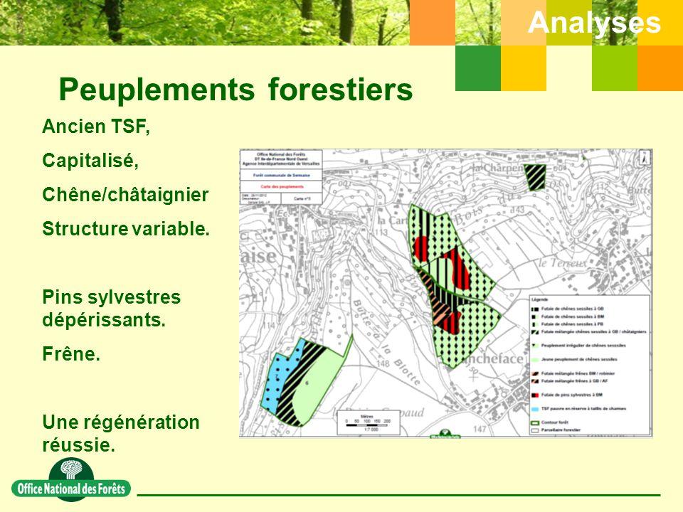 Peuplements forestiers Analyses Ancien TSF, Capitalisé, Chêne/châtaignier Structure variable.