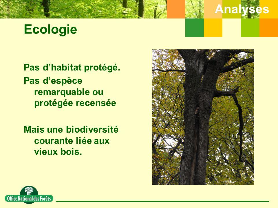 Ecologie Pas d'habitat protégé.