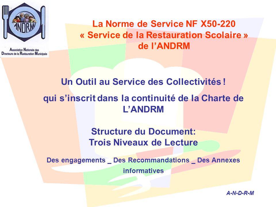 A-N-D-R-M A-N-D-R-M Un Outil au Service des Collectivités ! qui s'inscrit dans la continuité de la Charte de L'ANDRM Structure du Document: Trois Nive