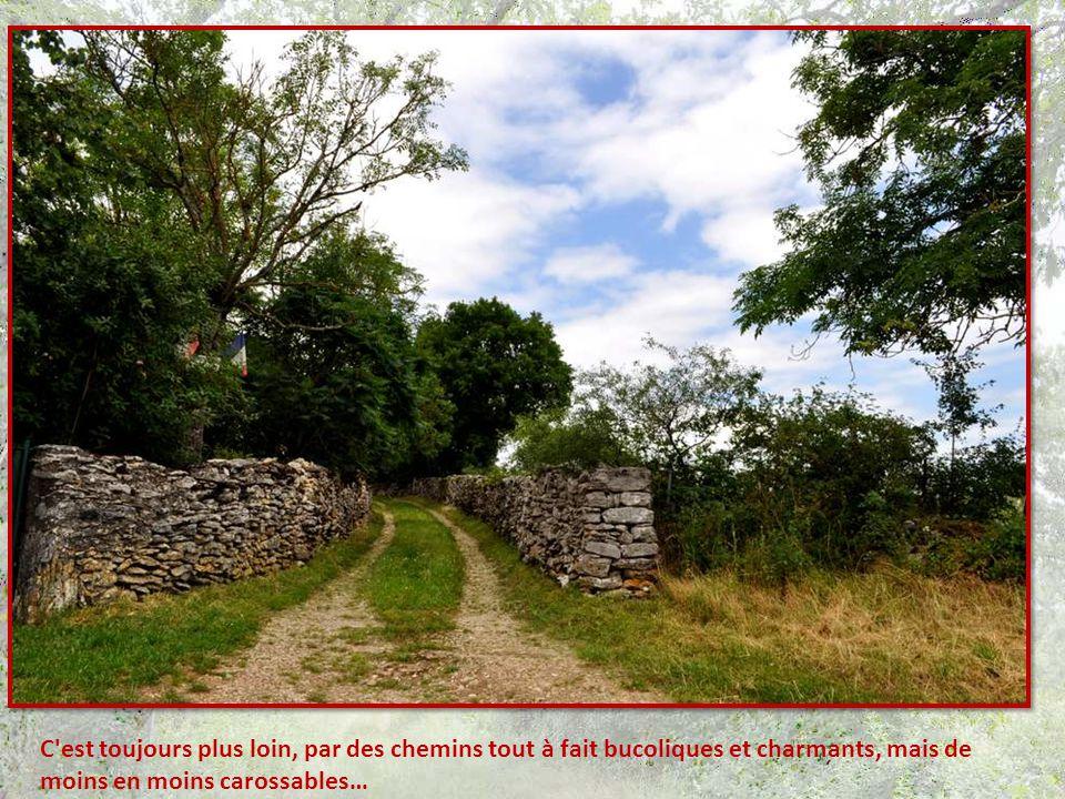 Arrivées à Carlucet, nous sommes alléchées par un panneau indicateur : moulin à 5 km.