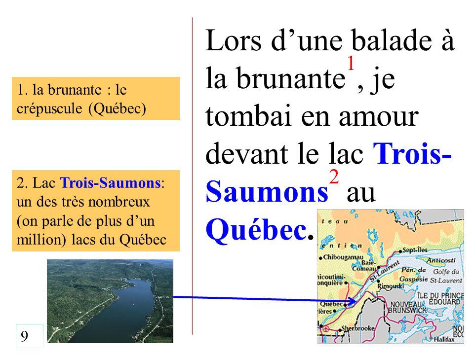 Lors d'une balade à la brunante 1, je tombai en amour devant le lac Trois- Saumons 2 au Québec. 2. Lac Trois-Saumons: un des très nombreux (on parle d