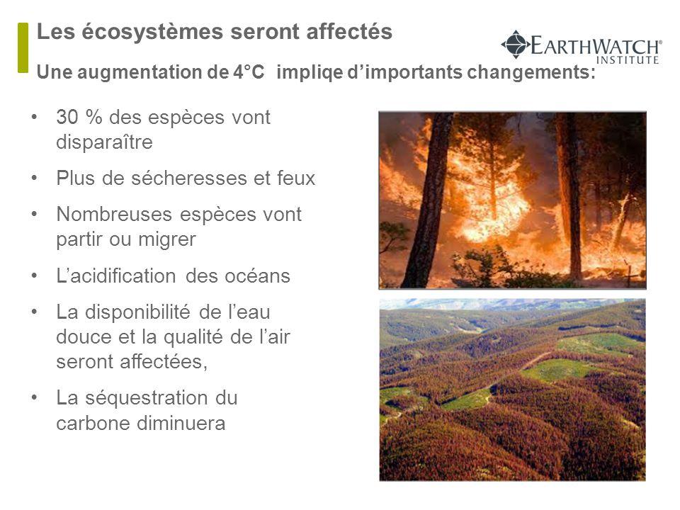 Les écosystèmes seront affectés  Une augmentation de 4°C impliqe d'importants changements: 30 % des espèces vont disparaître Plus de sécheresses et f