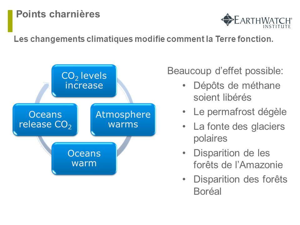 Points charnières Les changements climatiques modifie comment la Terre fonction. Beaucoup d'effet possible: Dépôts de méthane soient libérés Le permaf