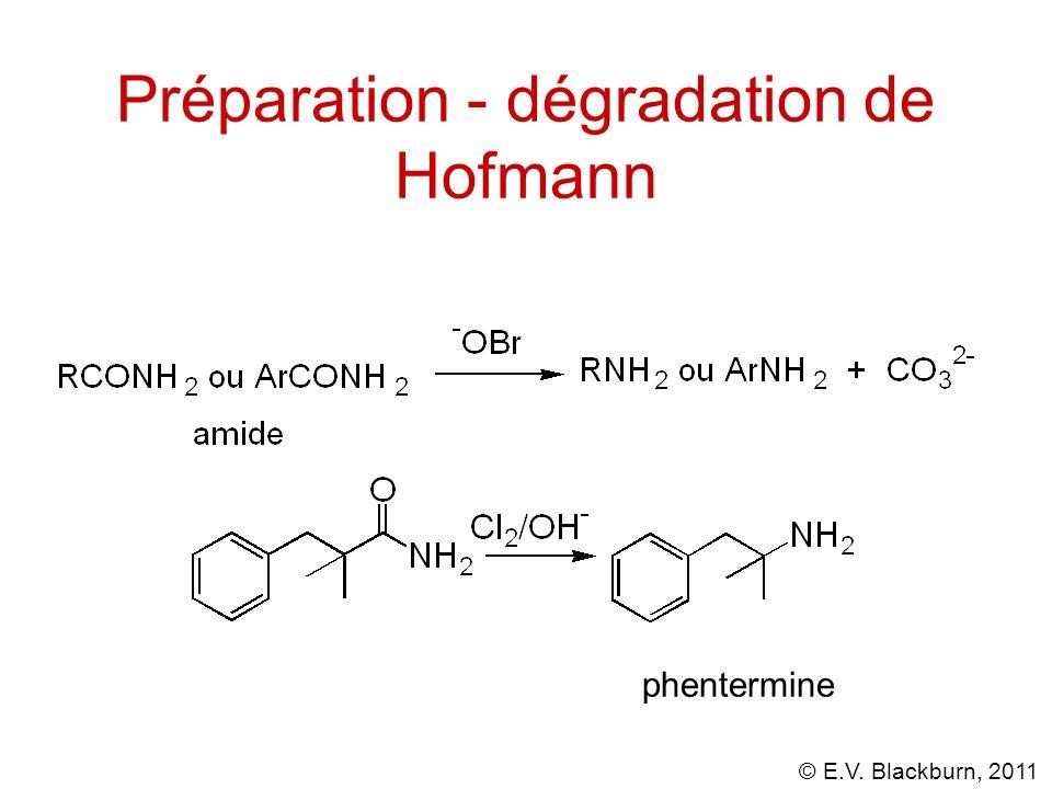 © E.V. Blackburn, 2011 Préparation - dégradation de Hofmann phentermine