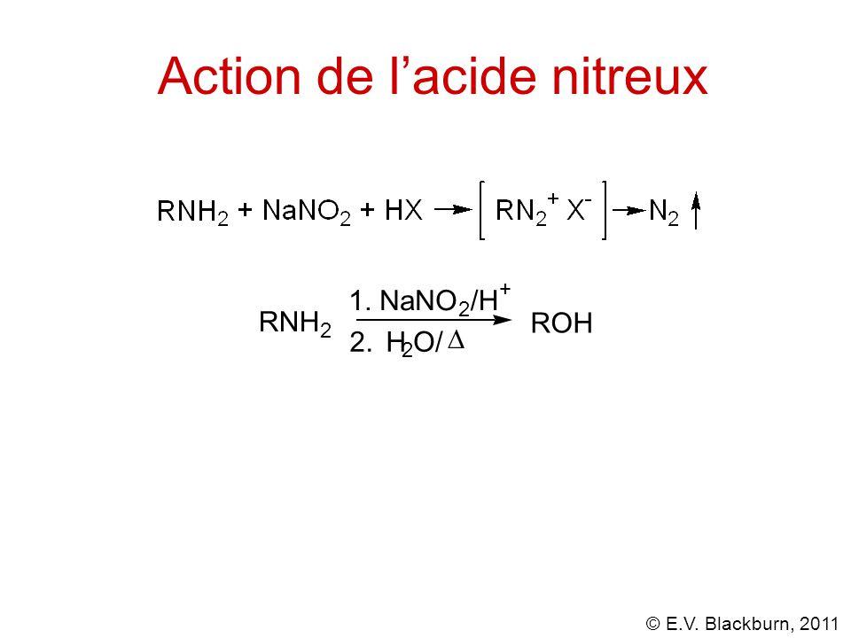 © E.V. Blackburn, 2011 Action de l'acide nitreux RNH 2 1. NaNO 2 /H + 2. H 2 O/  ROH