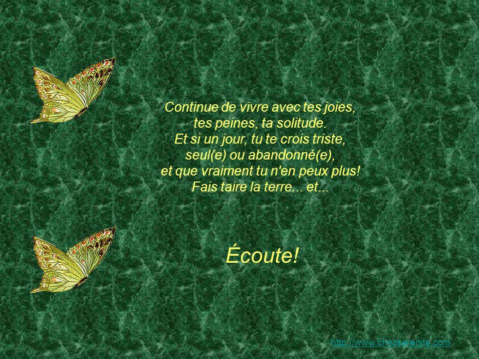 http://www.chezserenite.com Continue de vivre avec tes joies, tes peines, ta solitude.