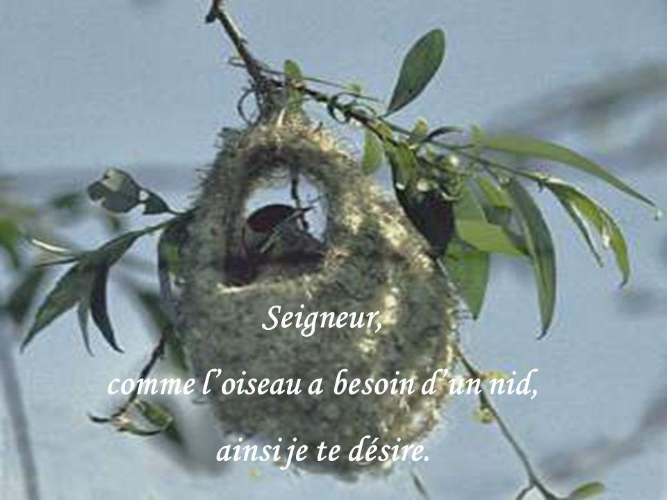 CRÉATION LE BER YVETTE novembre 2010 rene202@sympatico.ca Texte de Basile Ouedraogo pris dans la revue Notre-Dame du Cap Musique : Zamfir
