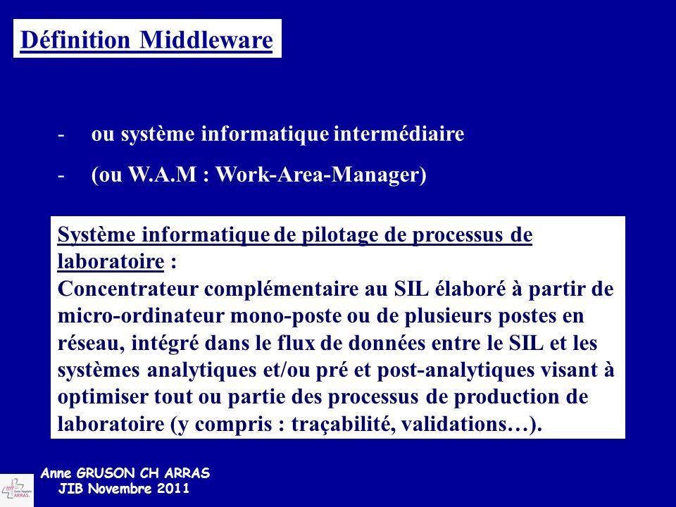 -ou système informatique intermédiaire -(ou W.A.M : Work-Area-Manager) Système informatique de pilotage de processus de laboratoire : Concentrateur co