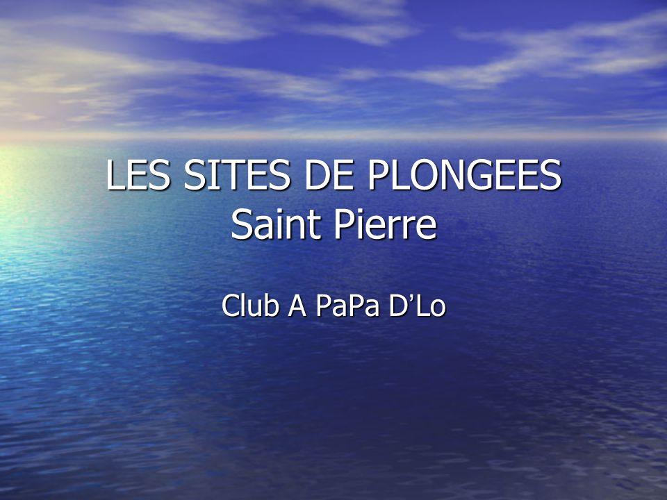 LES SITES DE PLONGEES Saint Pierre Club A PaPa D ' Lo