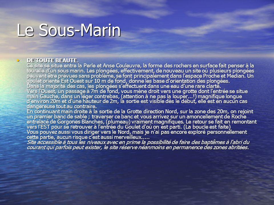 Le Sous-Marin DE TOUTE BEAUTE. Ce site se situe entre la Perle et Anse Couleuvre, la forme des rochers en surface fait penser à la tourelle d'un sous