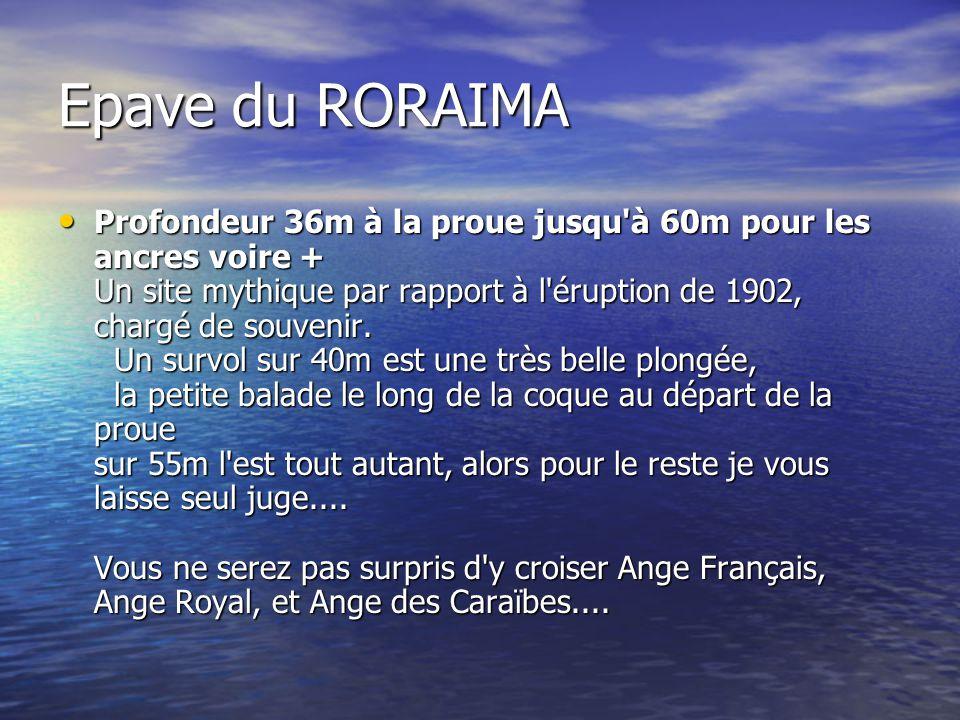 Epave du RORAIMA Profondeur 36m à la proue jusqu'à 60m pour les ancres voire + Un site mythique par rapport à l'éruption de 1902, chargé de souvenir.
