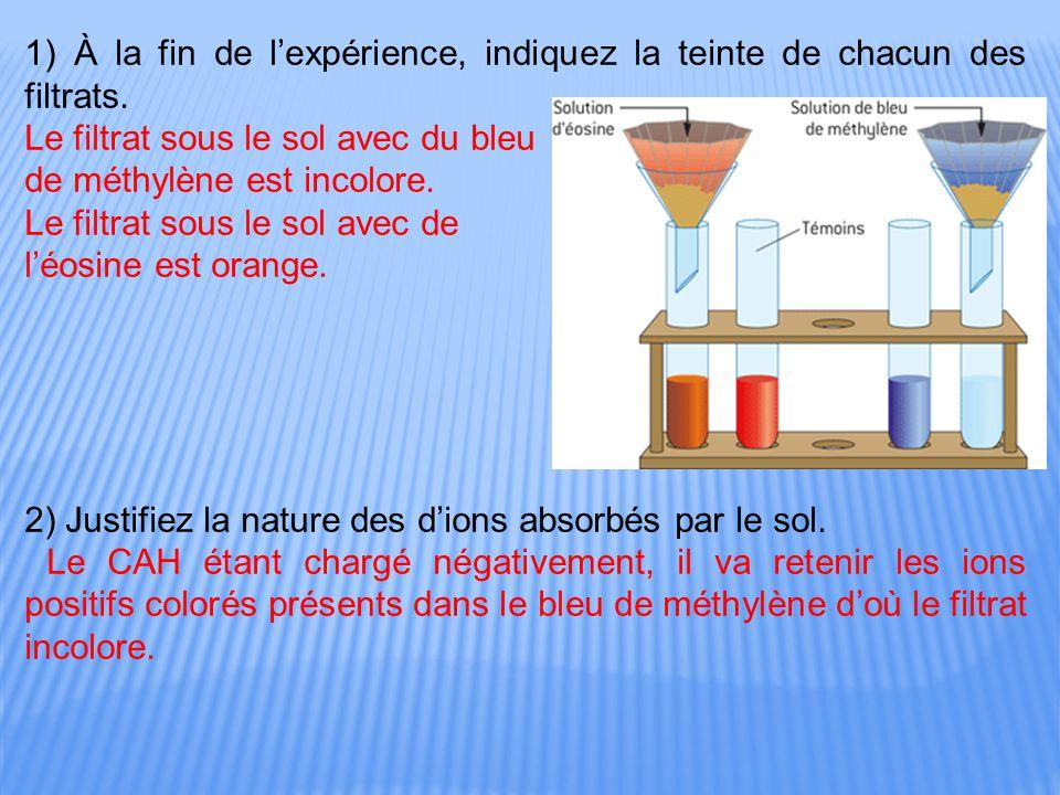 1) À la fin de l'expérience, indiquez la teinte de chacun des filtrats.