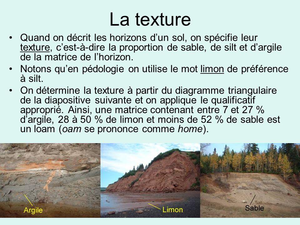 La texture Quand on décrit les horizons d'un sol, on spécifie leur texture, c'est-à-dire la proportion de sable, de silt et d'argile de la matrice de
