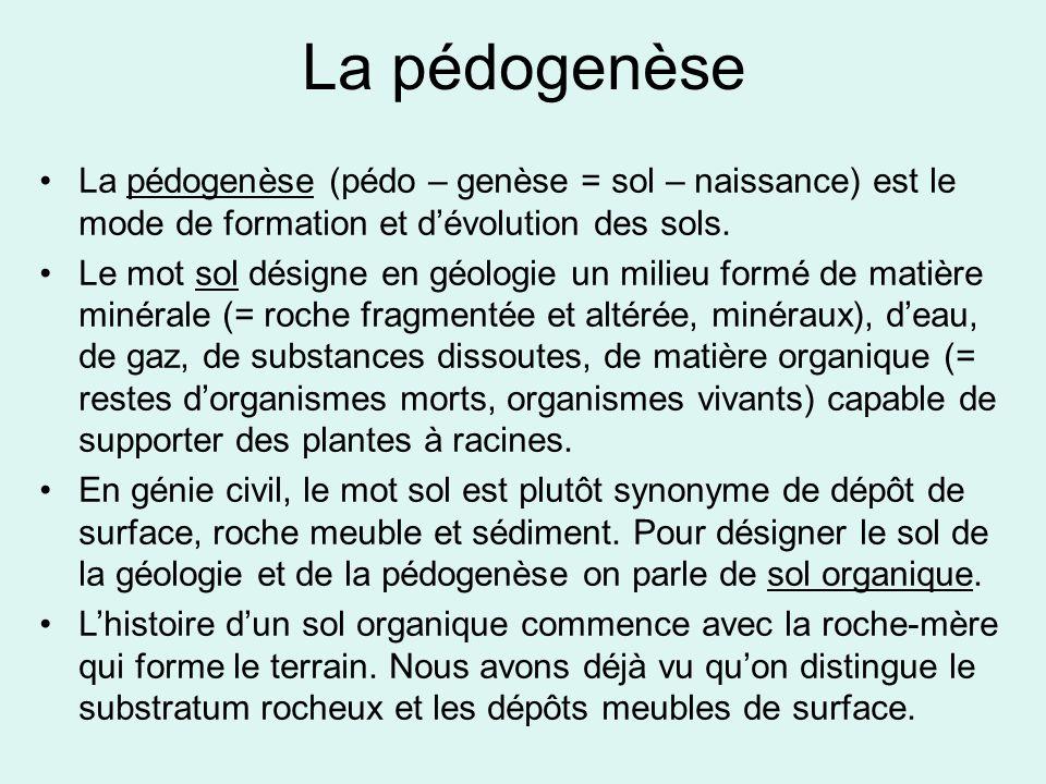 La pédogenèse La pédogenèse (pédo – genèse = sol – naissance) est le mode de formation et d'évolution des sols. Le mot sol désigne en géologie un mili