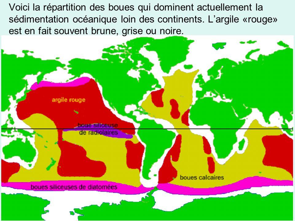 Voici la répartition des boues qui dominent actuellement la sédimentation océanique loin des continents. L'argile «rouge» est en fait souvent brune, g