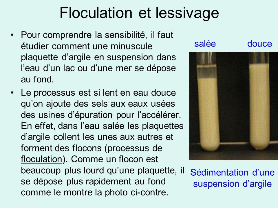 Floculation et lessivage Pour comprendre la sensibilité, il faut étudier comment une minuscule plaquette d'argile en suspension dans l'eau d'un lac ou