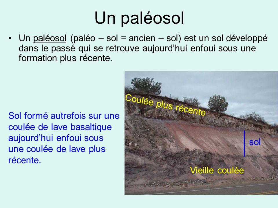 Un paléosol Un paléosol (paléo – sol = ancien – sol) est un sol développé dans le passé qui se retrouve aujourd'hui enfoui sous une formation plus réc