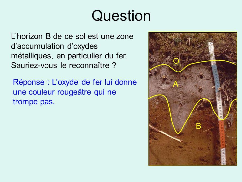 Question L'horizon B de ce sol est une zone d'accumulation d'oxydes métalliques, en particulier du fer. Sauriez-vous le reconnaître ? Réponse : L'oxyd