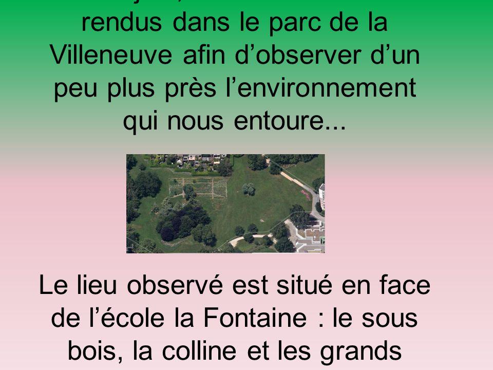 Jeudi 4 juin, nous nous sommes rendus dans le parc de la Villeneuve afin d'observer d'un peu plus près l'environnement qui nous entoure... Le lieu obs