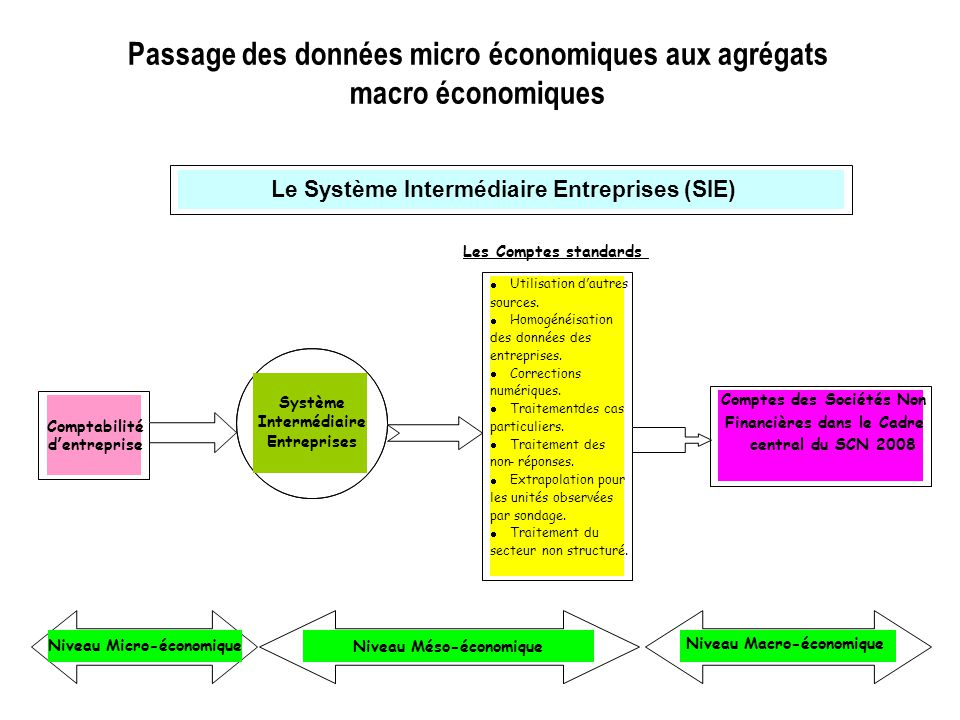 Passage des données micro économiques aux agrégats macro économiques Les Comptes standards Le Système Intermédiaire Entreprises (SIE)  Utilisation d'