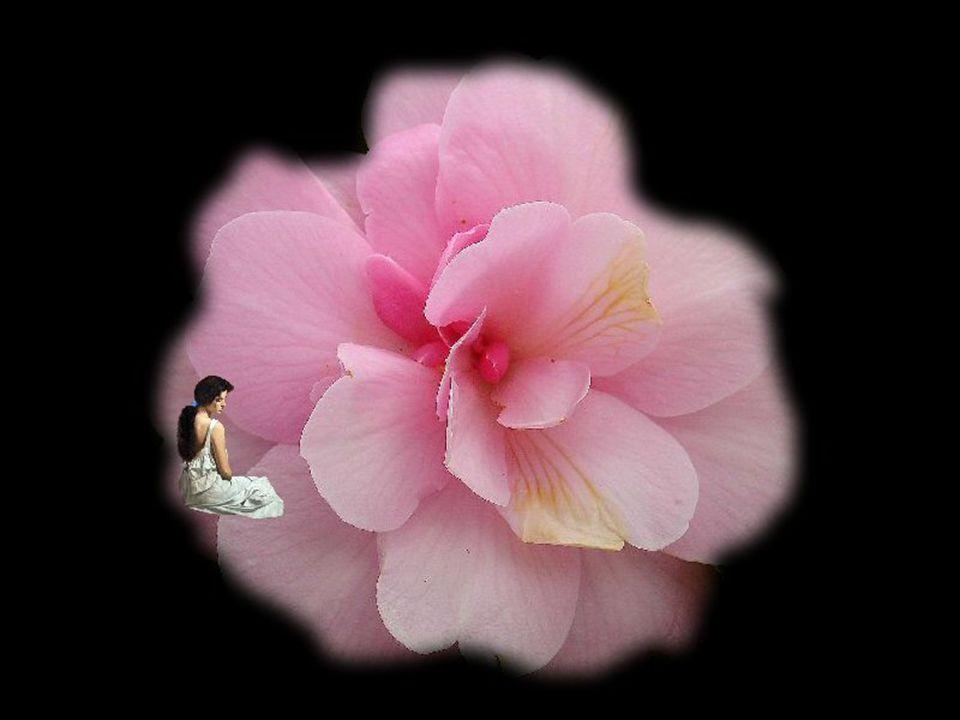 Souvent…on pleure… Devant l impression forte de l injustice… Le cœur révolté…pour lui c est le supplice… Souvent…on pleure… Juste à la pensée de vieillir et de mourir… Le cœur ému, alarmé…il ne peut se retenir…