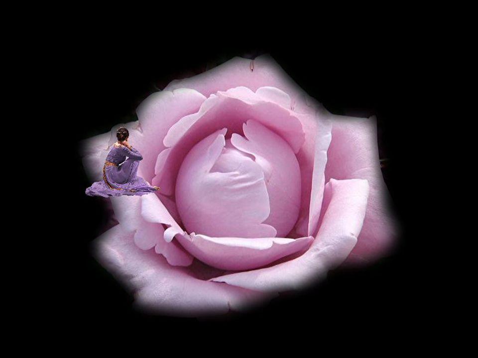 Sans avertir dans tous ces bouleversements… personne n est prêt à tant de dérangements… Savoir accepter les contrariétés de la vie… Devant ces émotions…trop souvent le cœur réagit…