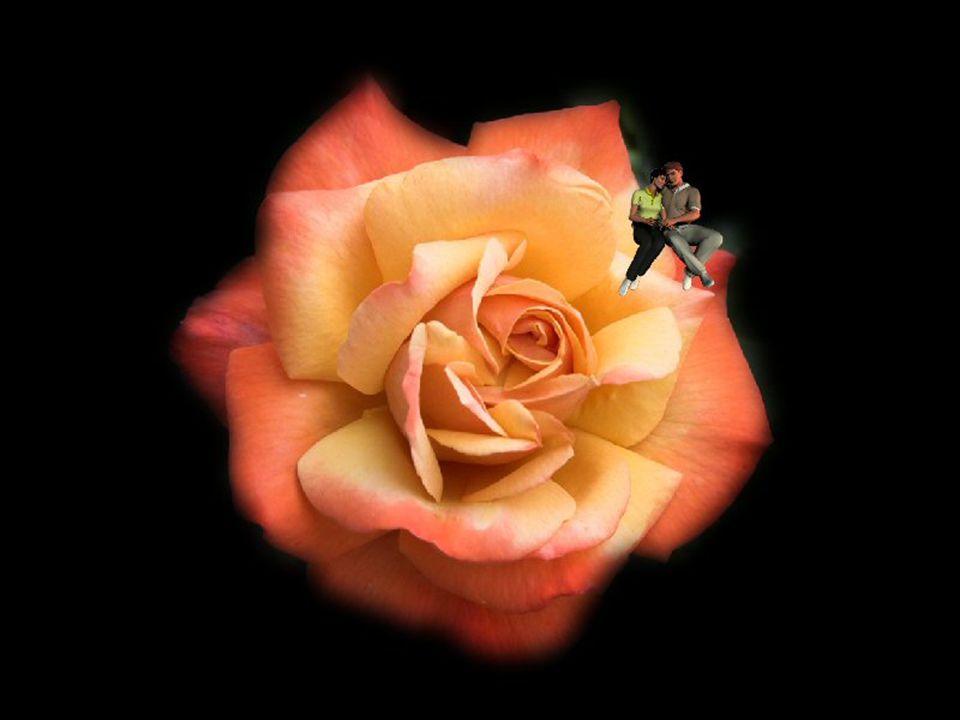 Souvent…on pleure… À la découverte inespérée de l amitié… Devant ce bonheur…le cœur se sent honoré… Souvent…on pleure… Devant les aveux troublants de confidences… Le cœur suffoque…devant tant de souffrance…