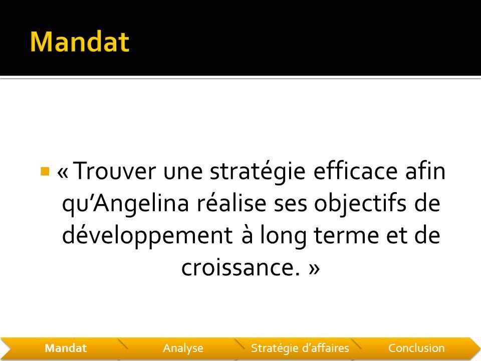  « Trouver une stratégie efficace afin qu'Angelina réalise ses objectifs de développement à long terme et de croissance.