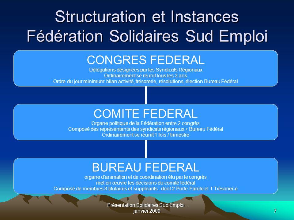 Présentation Solidaires Sud Emploi - janvier 20097 Structuration et Instances Fédération Solidaires Sud Emploi CONGRES FEDERAL Délégations désignées p