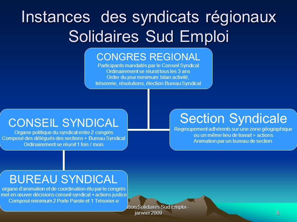 Présentation Solidaires Sud Emploi - janvier 20098 Instances des syndicats régionaux Solidaires Sud Emploi CONGRES REGIONAL Participants mandatés par
