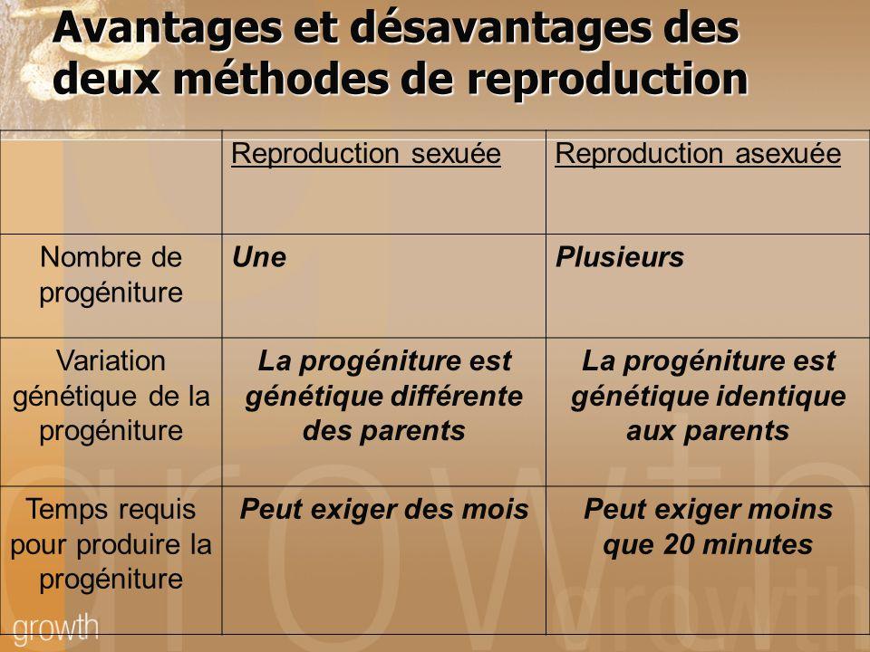 Avantages et désavantages des deux méthodes de reproduction Reproduction sexuéeReproduction asexuée Nombre de progéniture UnePlusieurs Variation génét
