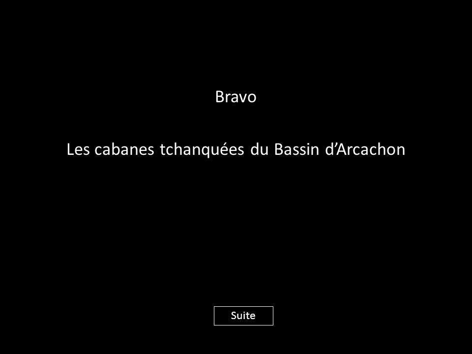 Bravo Les cabanes tchanquées du Bassin d'Arcachon Suite