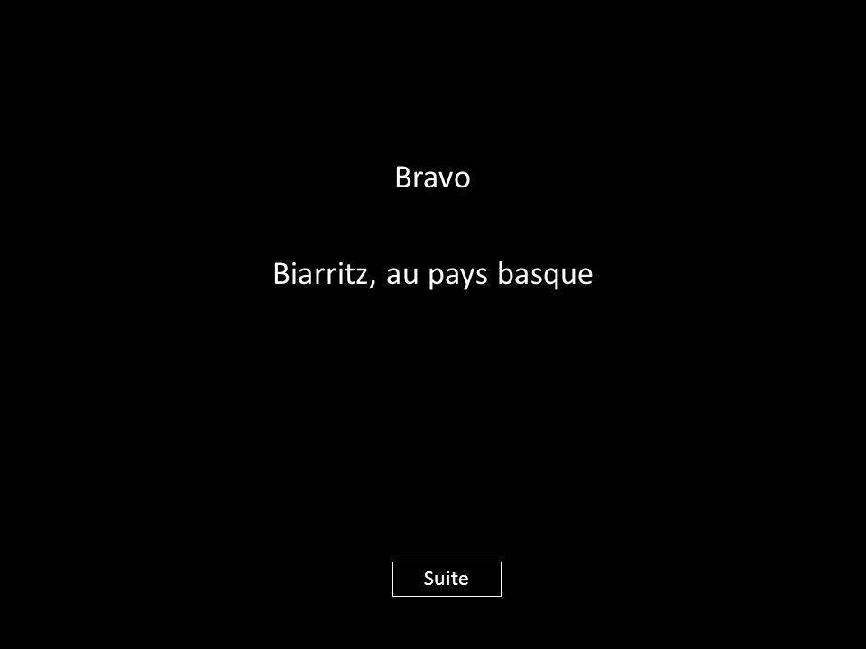 Bravo Biarritz, au pays basque Suite