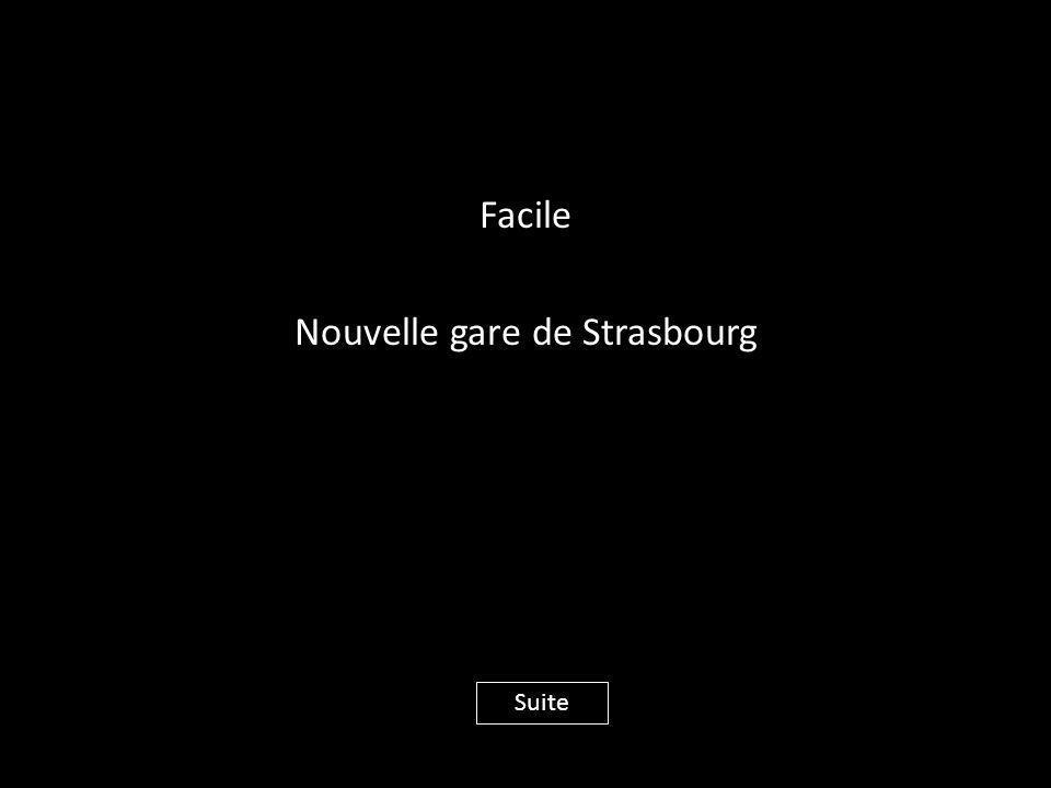 Facile Nouvelle gare de Strasbourg Suite