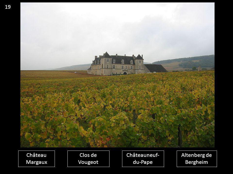 Château Margaux Clos de Vougeot Châteauneuf- du-Pape Altenberg de Bergheim 19