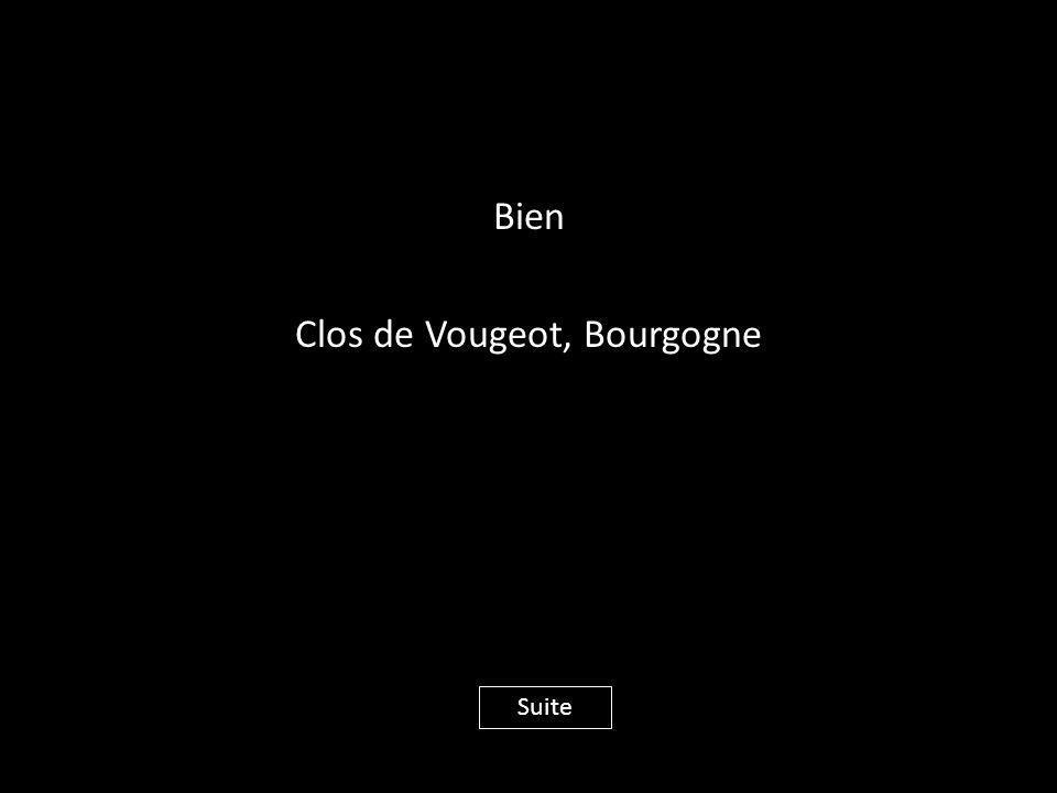 Bien Clos de Vougeot, Bourgogne Suite