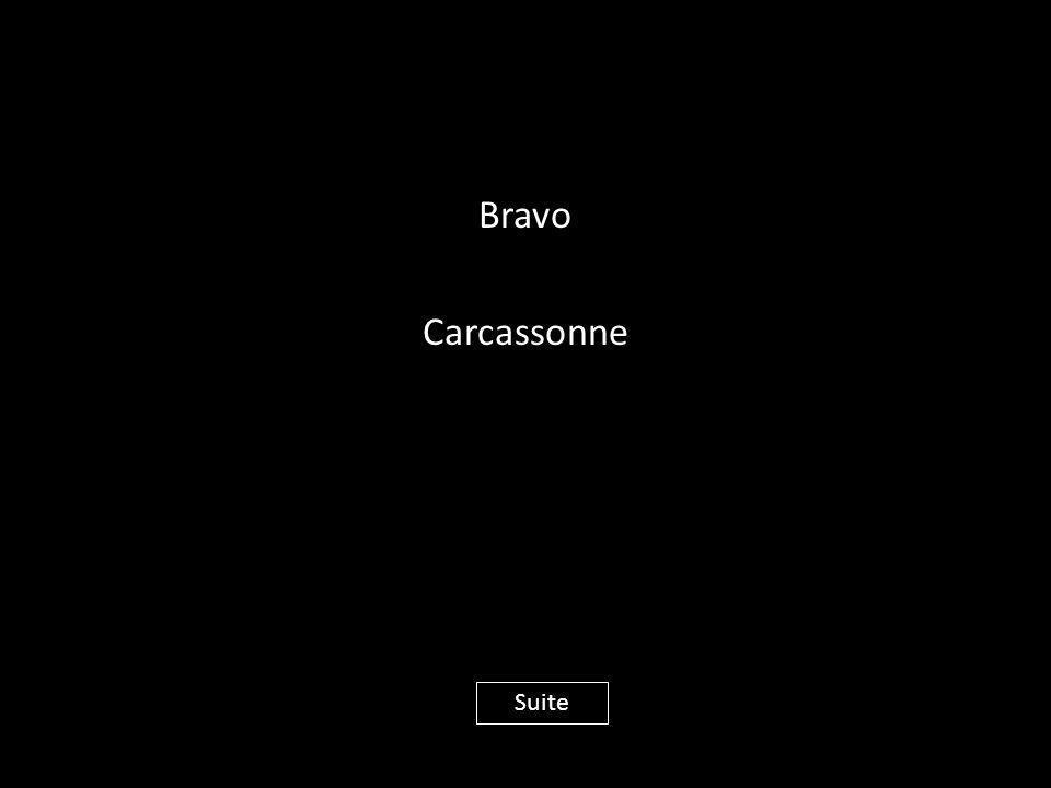 Bravo Carcassonne Suite